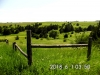16 Pasture view