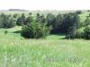 21 Pasture view