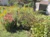 01.7 Flower Beds