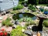 1.15 Fish Pond