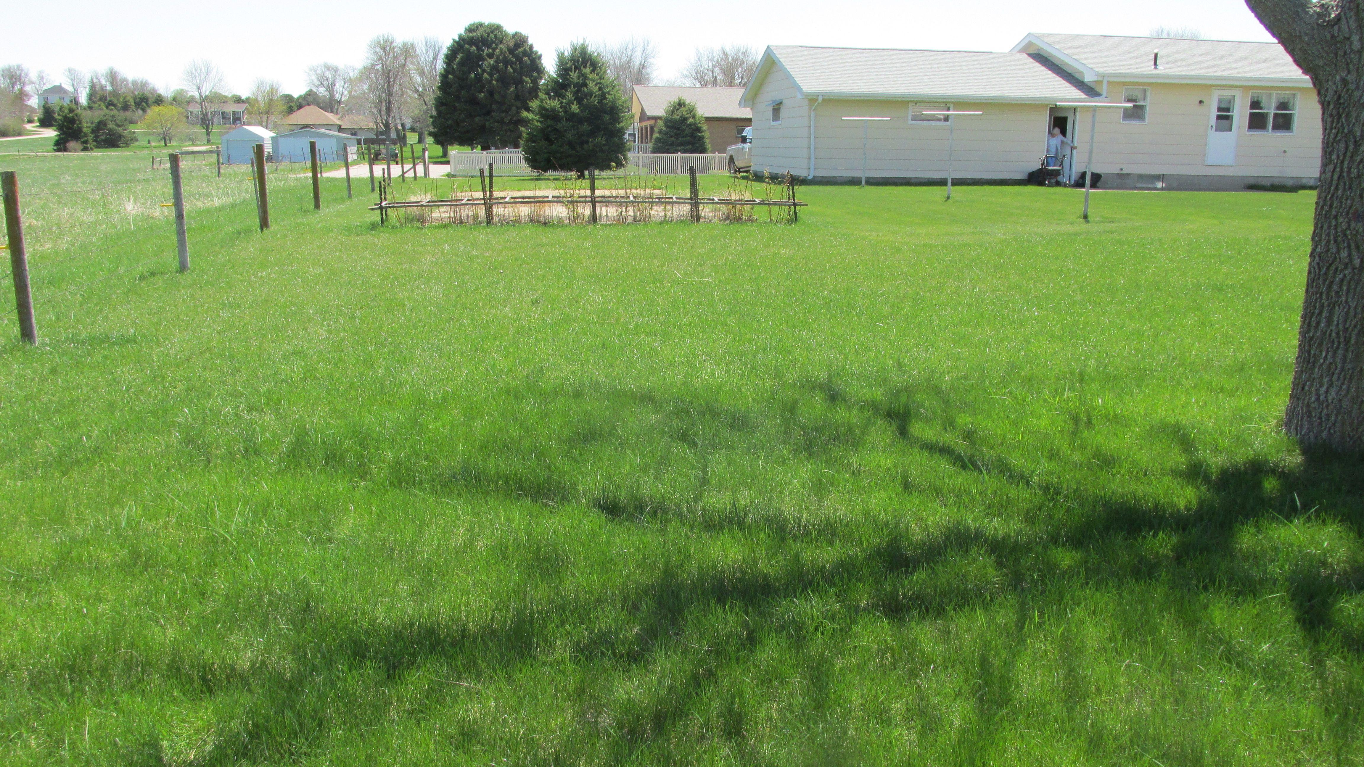 North lawn