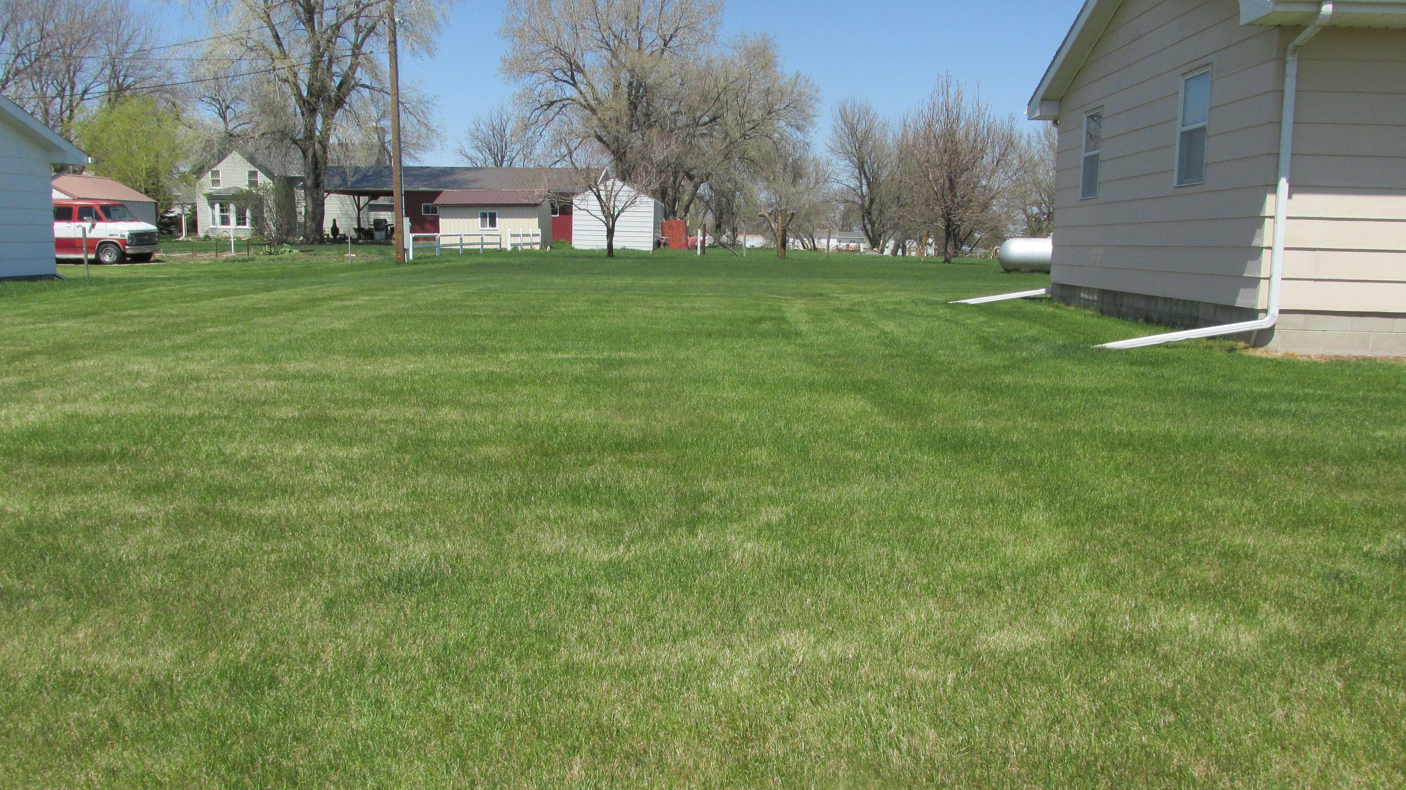 West lawn