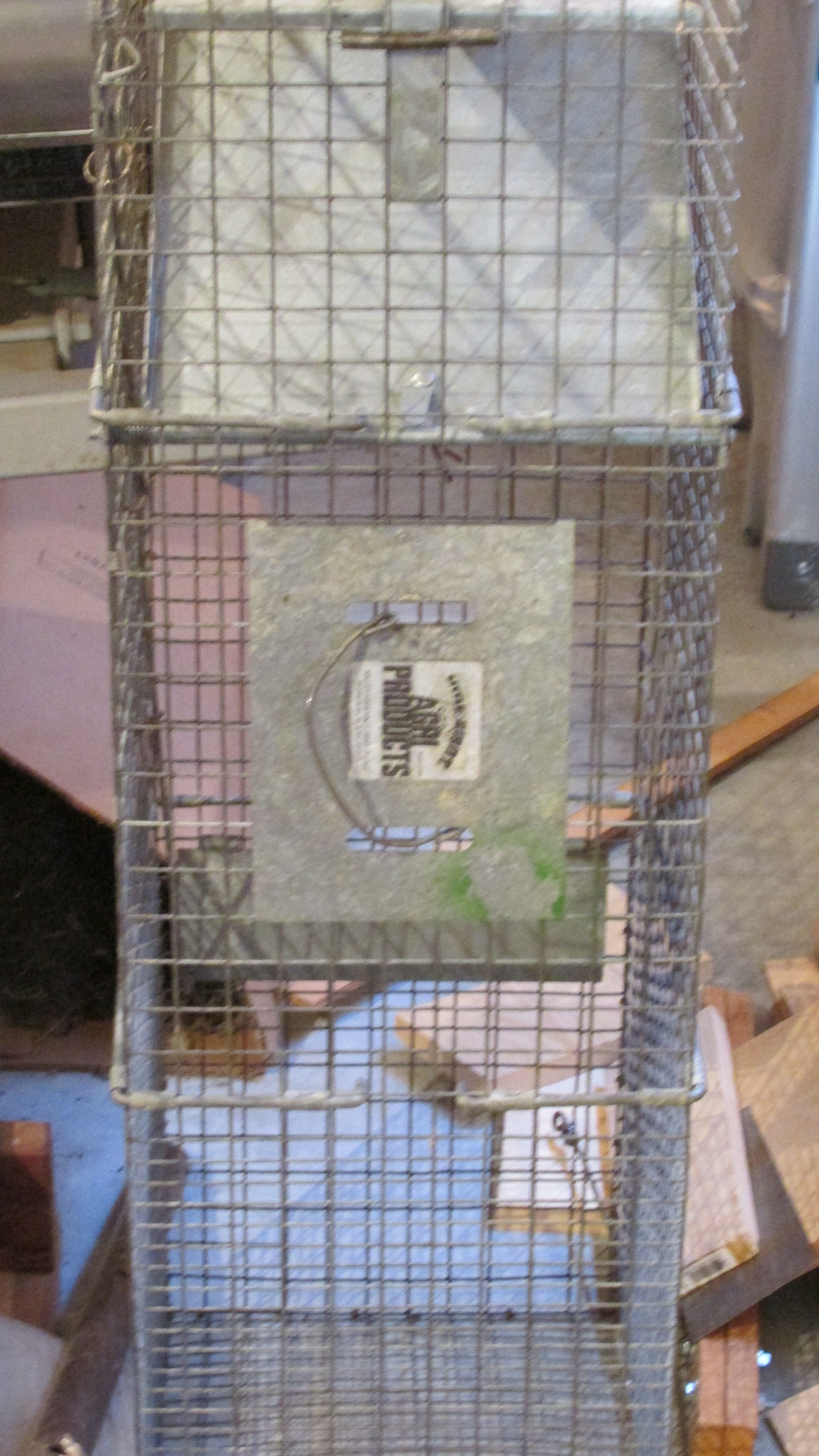 One of two Live Traps