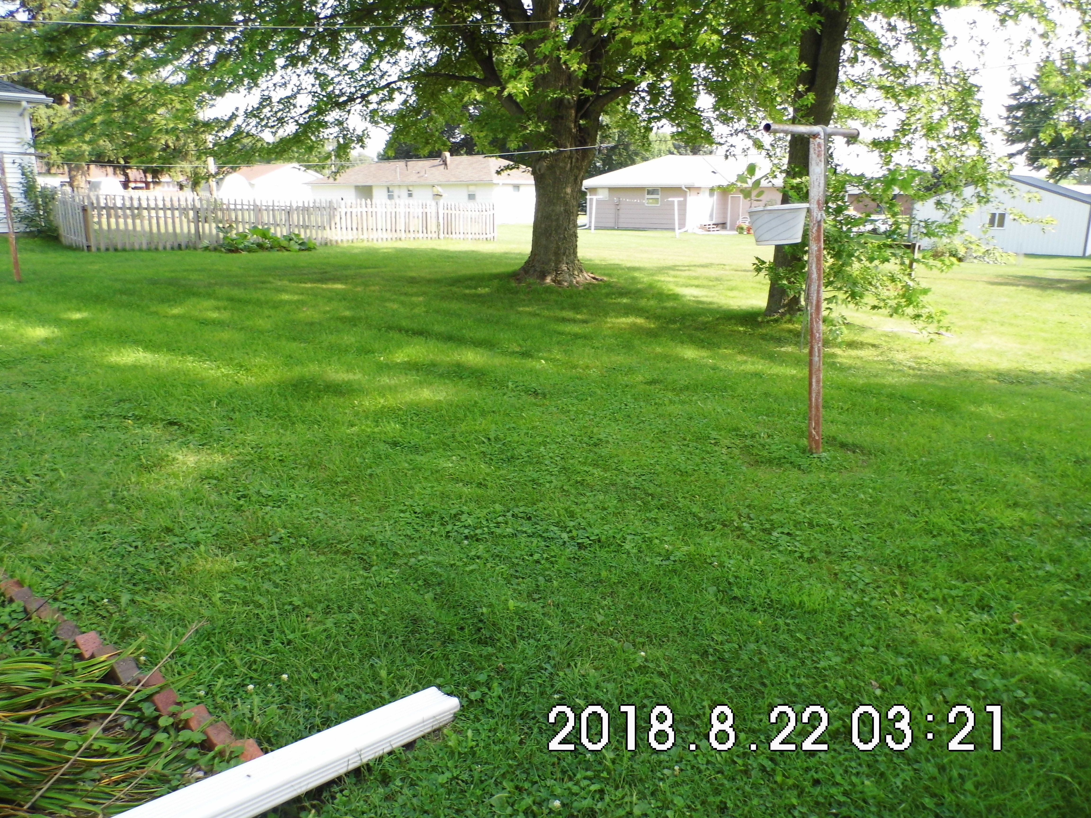 2.1 303 Elm St. Back yard